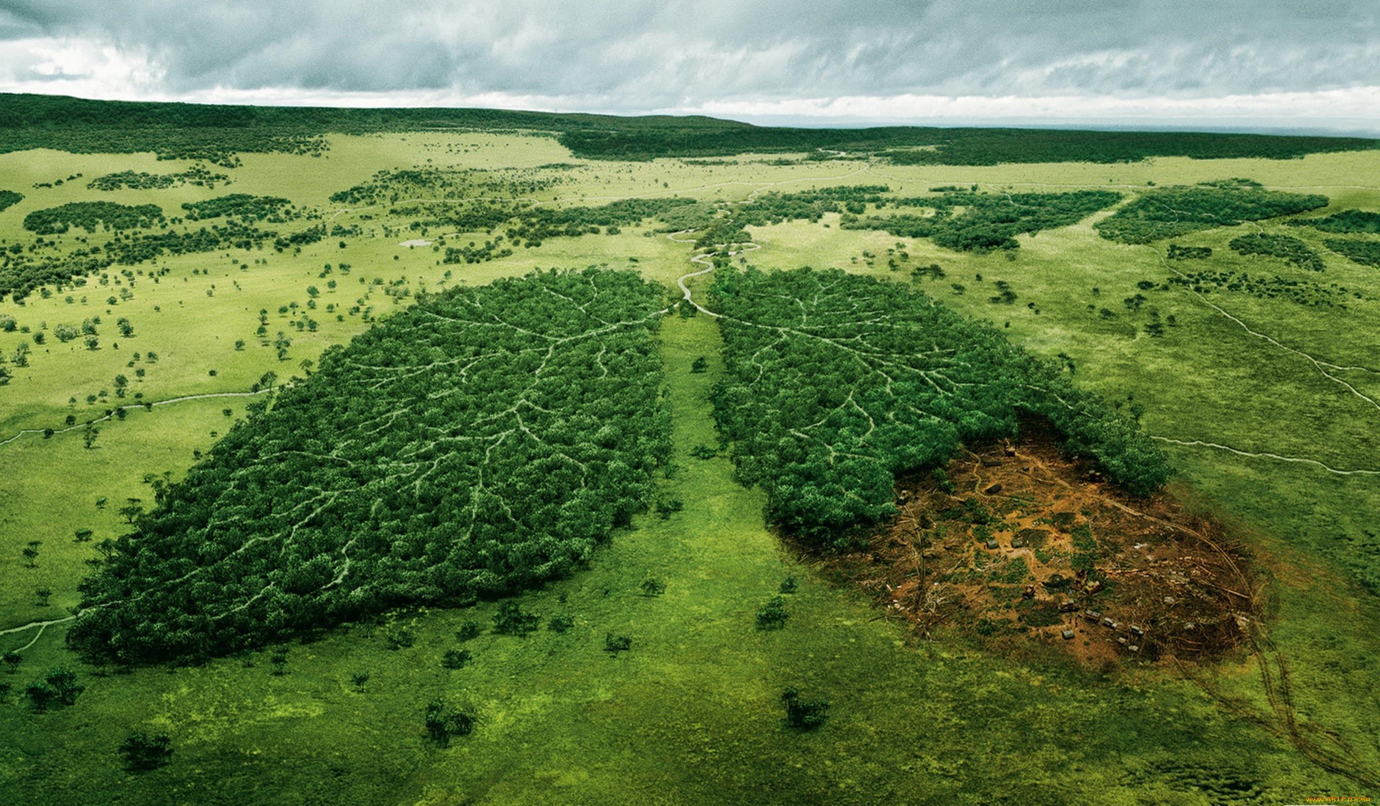 Всероссийский конкурс творческих работ «Сохраним природу и спасём жизнь!»