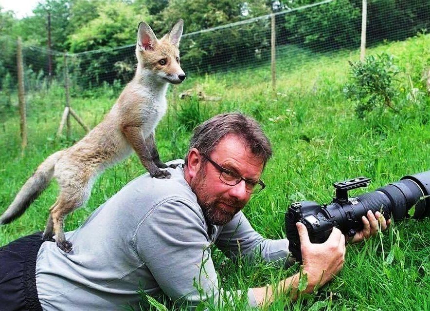 Всероссийский конкурс творческих работ «Про животных и людей»