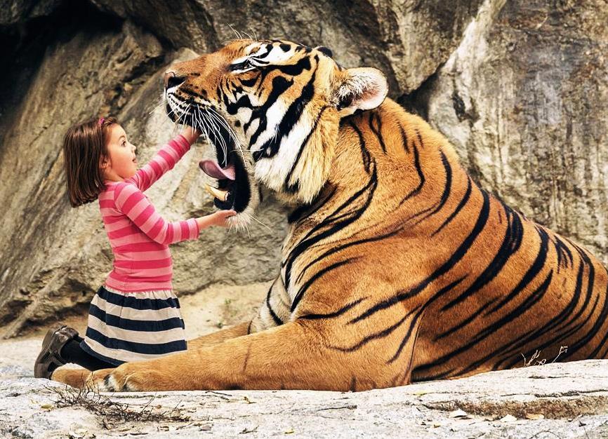 Всероссийский конкурс творческих работ «Мир животных и людей»