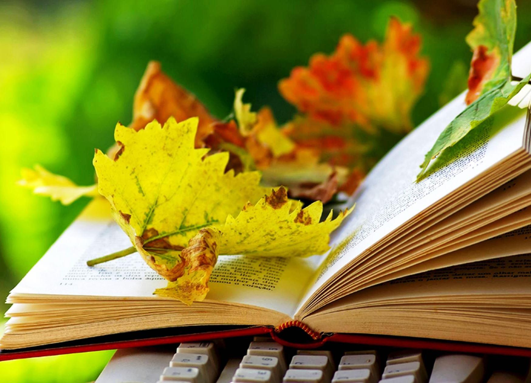 Всероссийский конкурс творческих работ «Книжные «осенины»